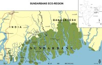 sundarbans, mangrove, world heritage site, ganges delta, bangladesh, rising sea levels