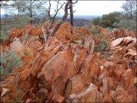 sandstone, jack hills, western australia, zircon, bruce watson, mark harrison, oldest