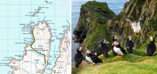 hermaness, nnr, unst, toolie, muckle flugga, out stack, puffins, great skuas, boxies, blanket bog
