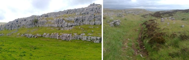 clints, great asby scar nature reserve, grikes, limestone pavement